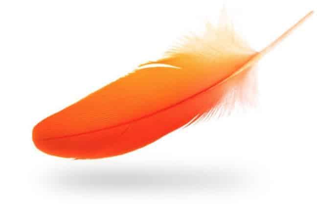 indigo ink orange feather